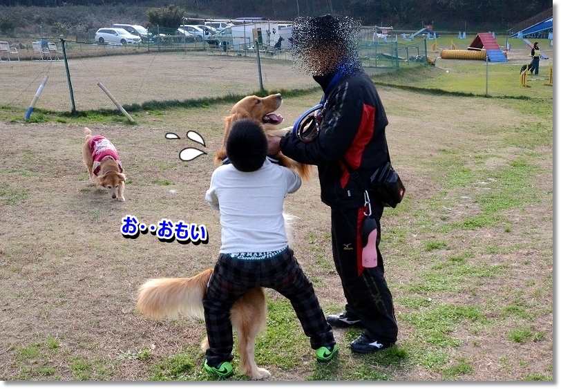 DSC_3404_20160110204620db4.jpg