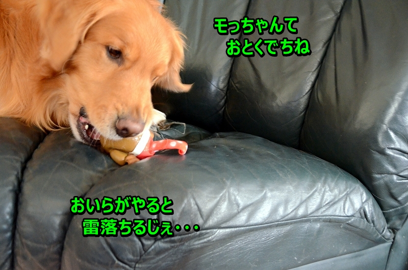 DSC_3598_20160215224814449.jpg