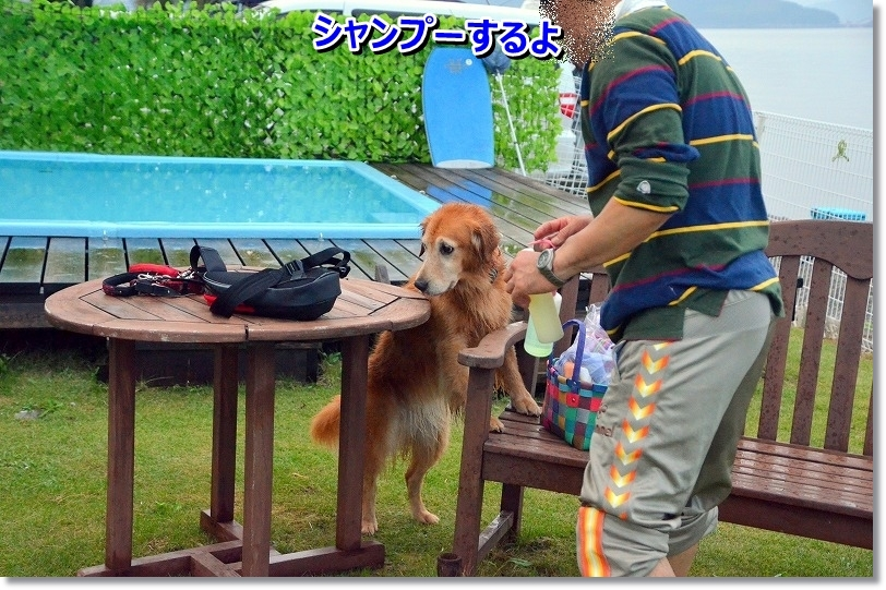 DSC_7802_20151025134502399.jpg