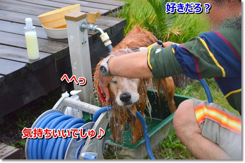DSC_7812_20151025134504926.jpg