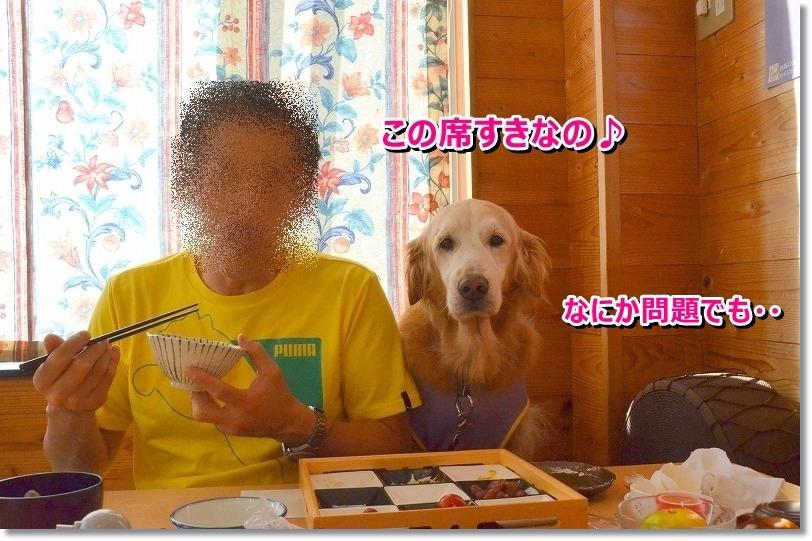 DSC_7989_20151027215609b05.jpg