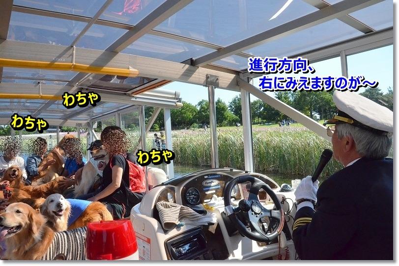 DSC_8268_201510301459259cf.jpg