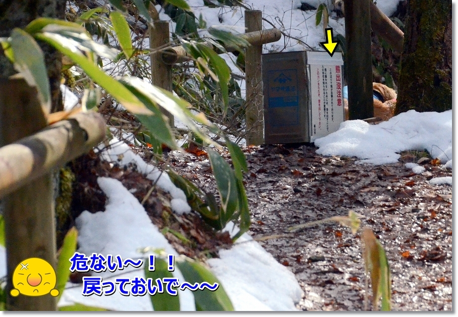DSC_9865.jpg