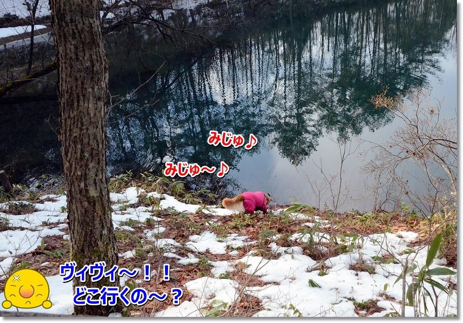 DSC_9870_20160301204653614.jpg