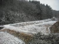 2016-02-17-004.jpg