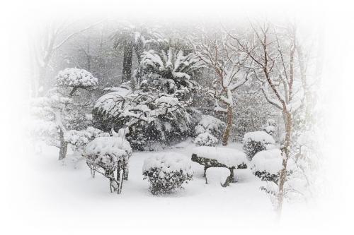 1.24大雪
