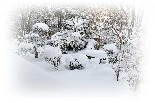 大雪1.25
