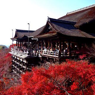 紅葉2015予想!京都清水寺の見ごろは?.