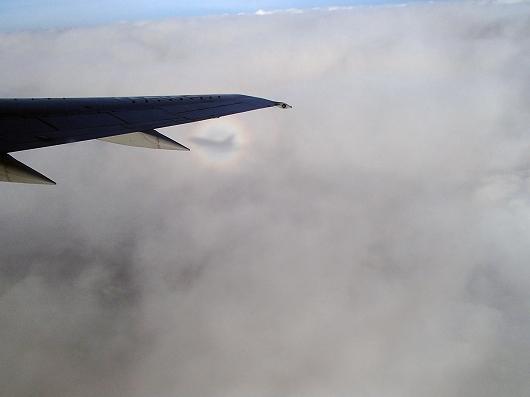 ANA便飛行中06-20151030