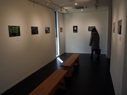 写真展20160221