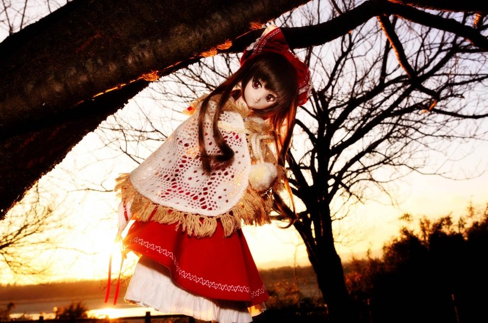 DSC_8472aa_2015122823343319e.jpg