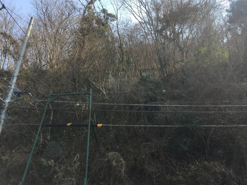 arashiyama07.jpg