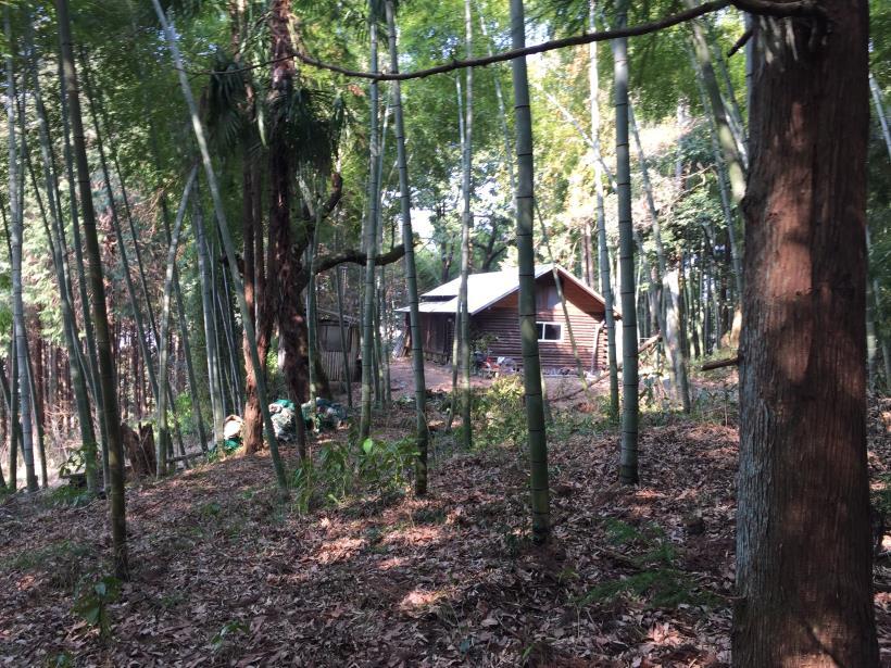 arashiyama104.jpg