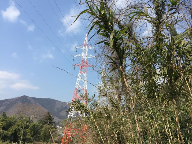 arashiyama113.jpg