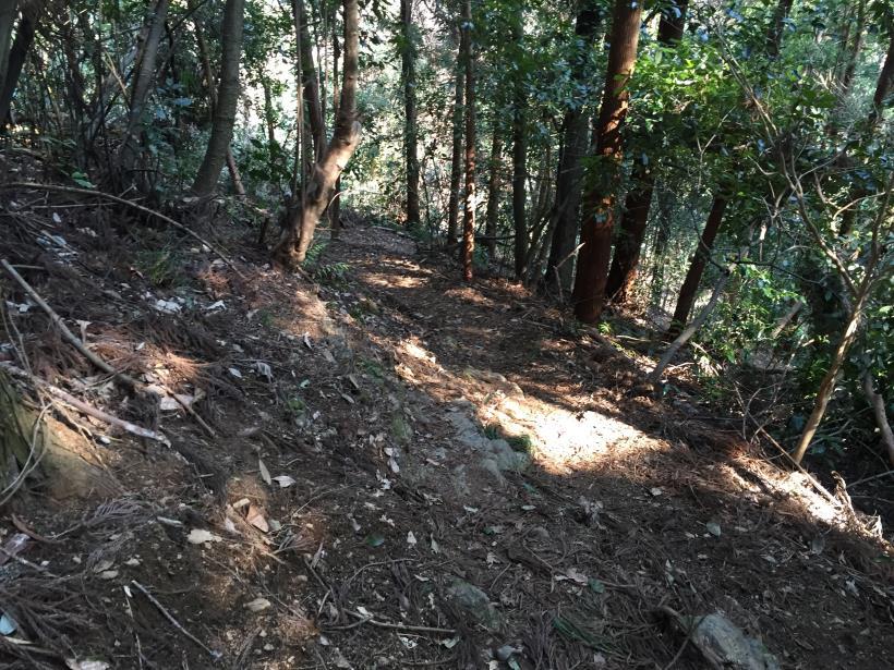 arashiyama124.jpg