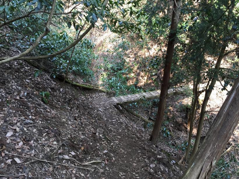arashiyama126.jpg