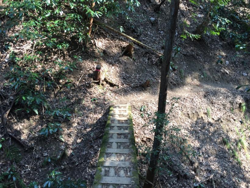 arashiyama127.jpg