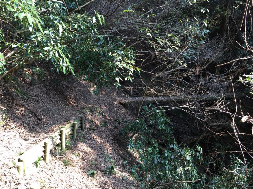 arashiyama129.jpg