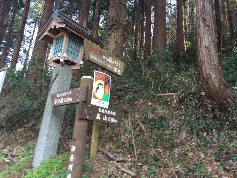 arashiyama13.jpg