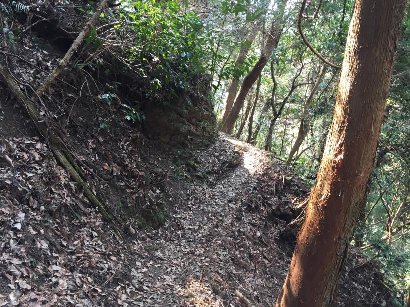 arashiyama135.jpg
