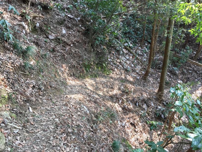 arashiyama137.jpg
