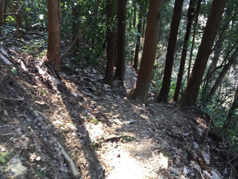 arashiyama138.jpg