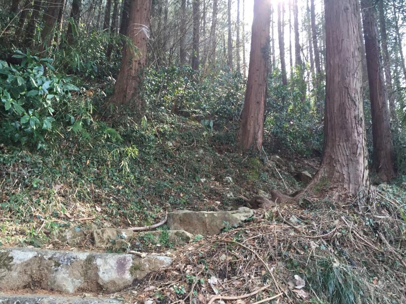 arashiyama14.jpg