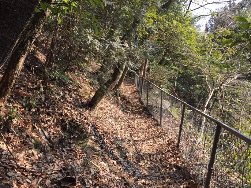 arashiyama140.jpg
