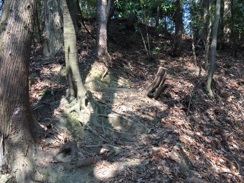 arashiyama141.jpg