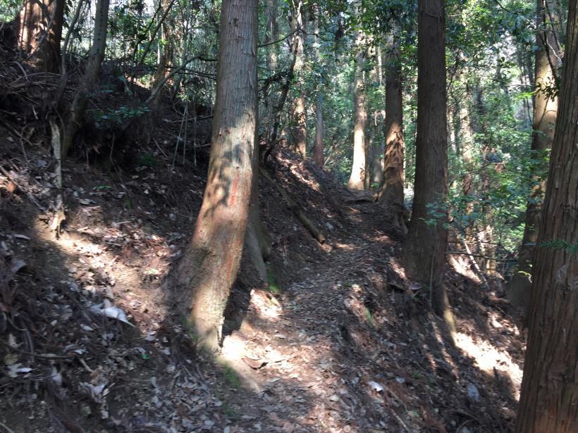arashiyama142.jpg