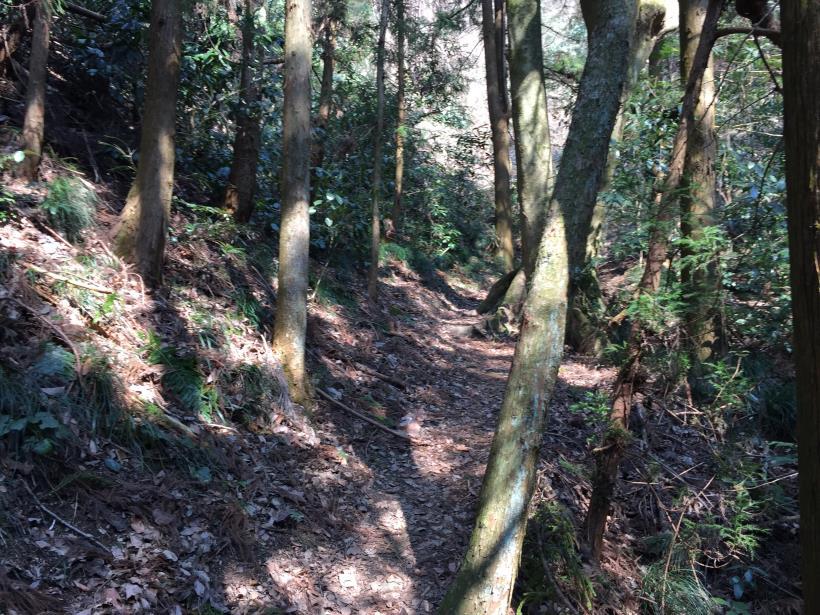 arashiyama143.jpg