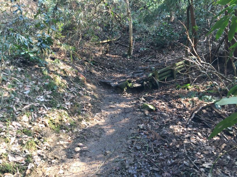 arashiyama145.jpg