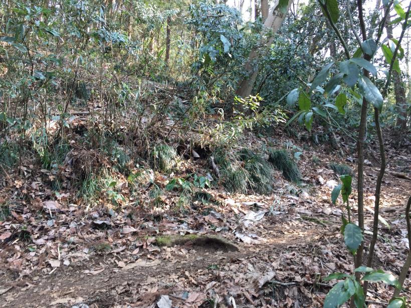 arashiyama146.jpg