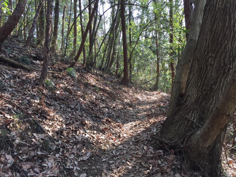 arashiyama149.jpg