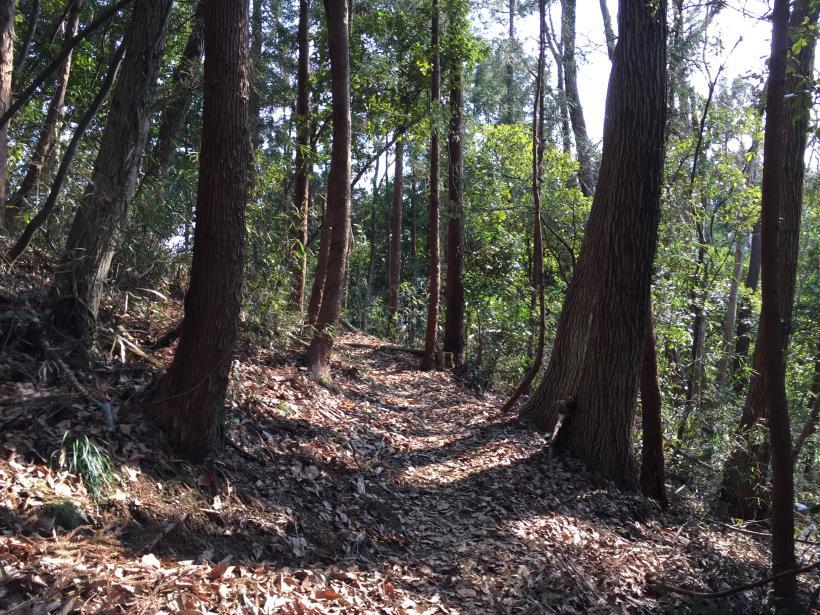arashiyama150.jpg