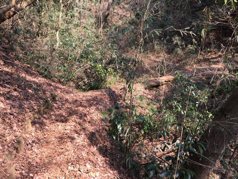arashiyama152.jpg