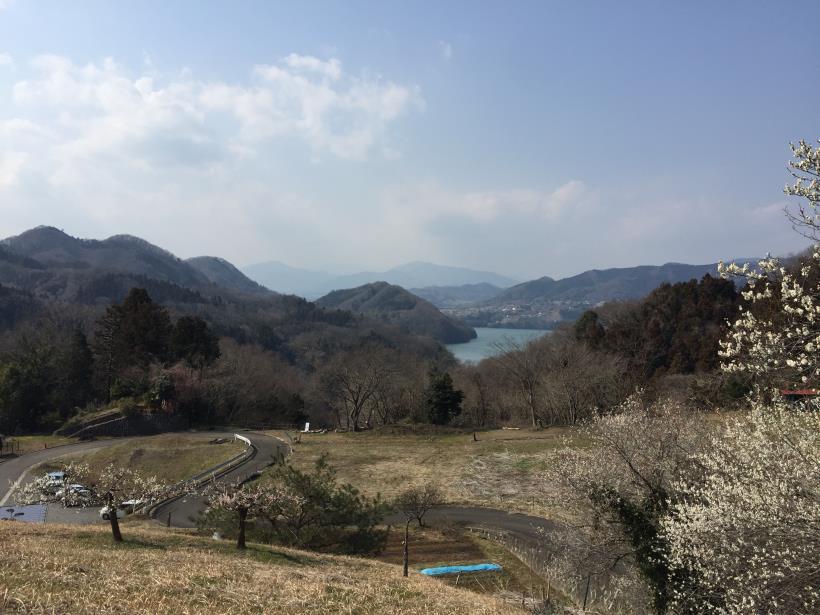 arashiyama165.jpg