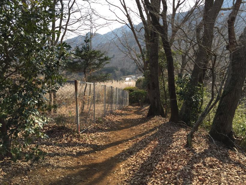 arashiyama167.jpg