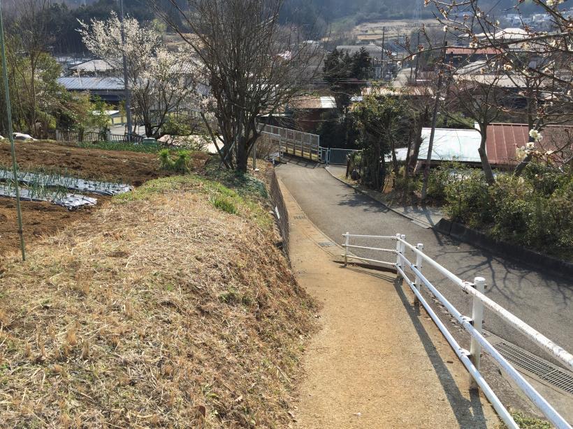 arashiyama172.jpg