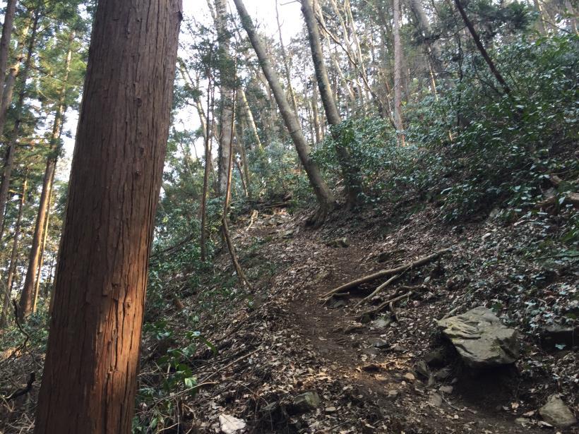 arashiyama20.jpg