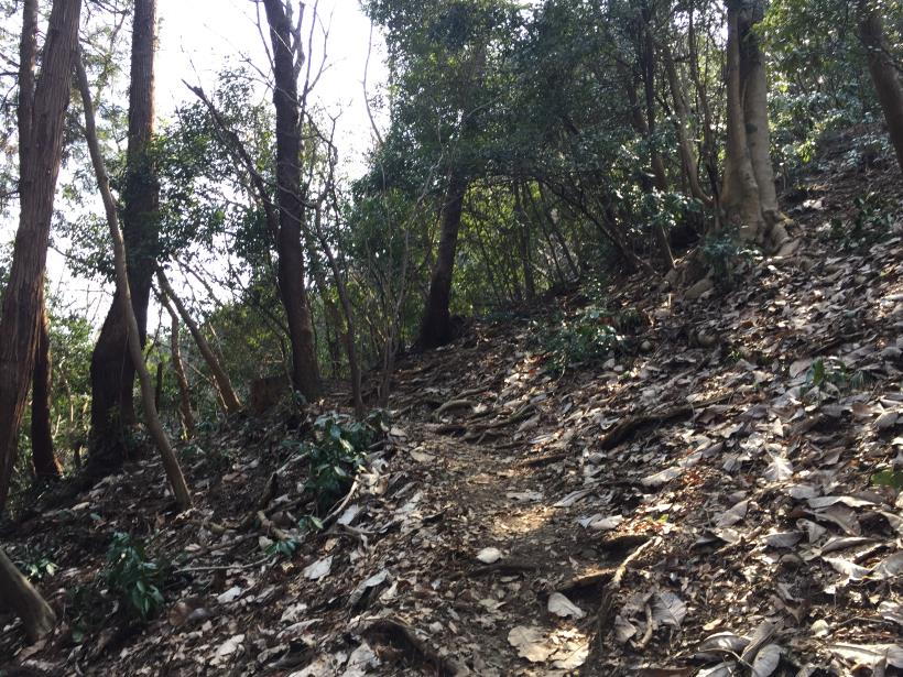 arashiyama25.jpg