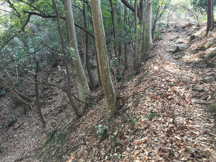 arashiyama30.jpg