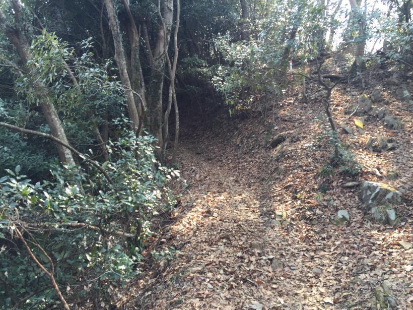 arashiyama33.jpg