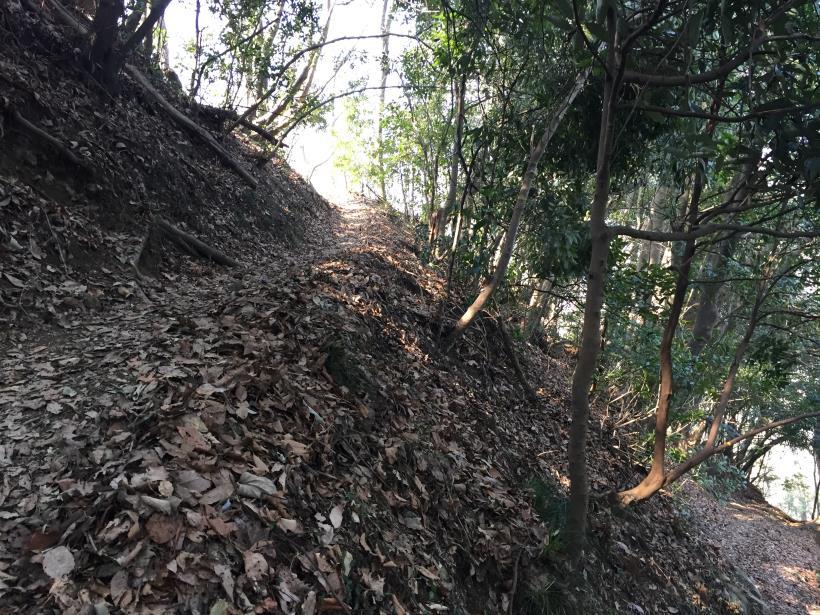arashiyama35.jpg