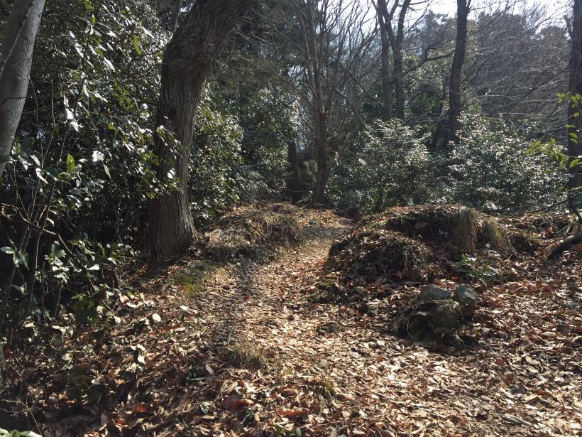 arashiyama36.jpg