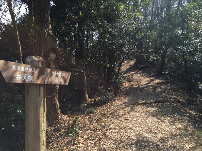 arashiyama38.jpg