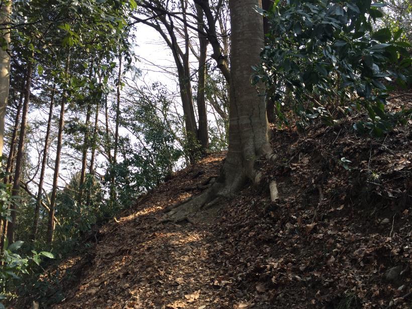 arashiyama39.jpg