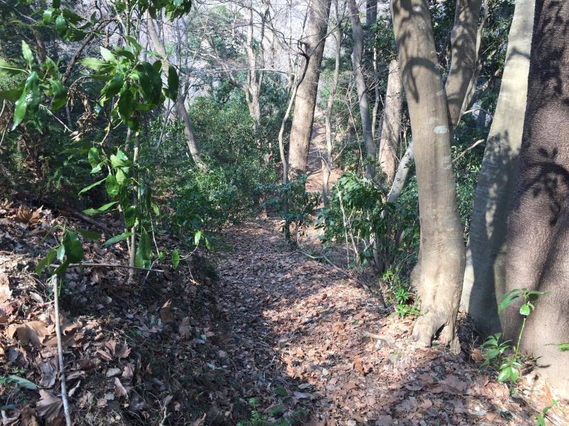 arashiyama40.jpg