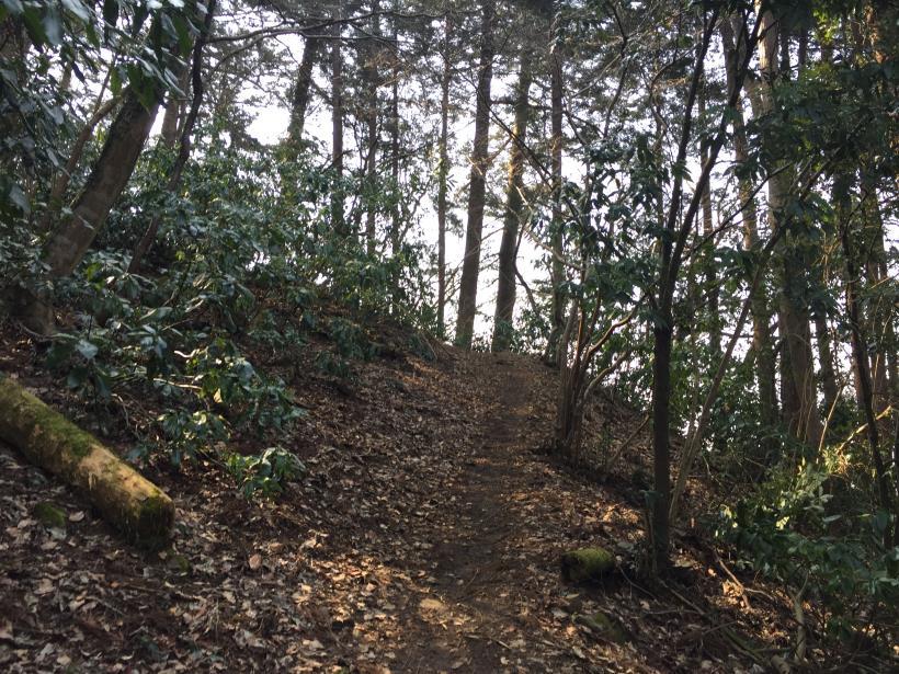 arashiyama44.jpg