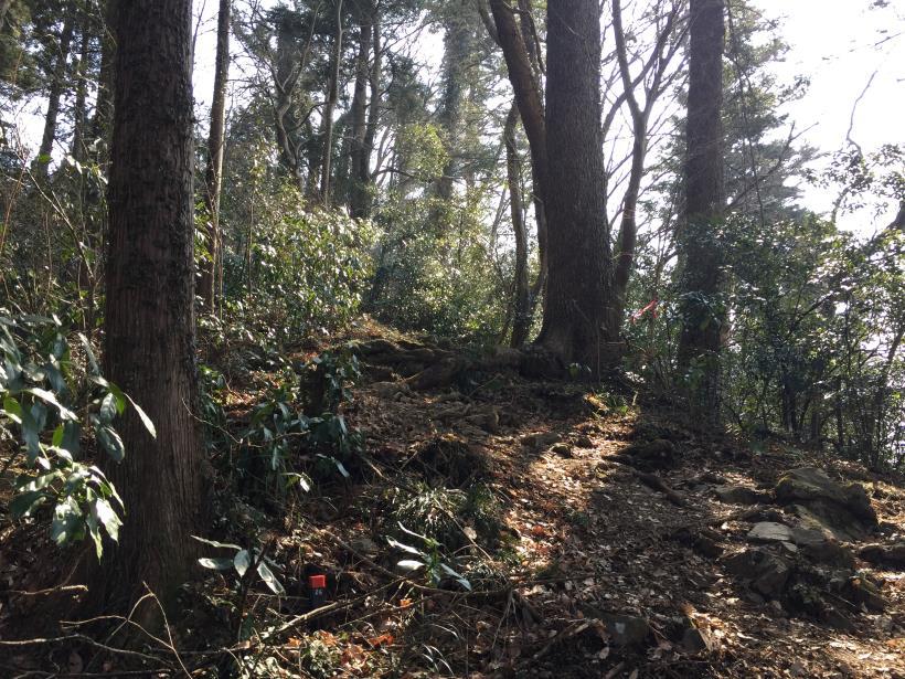 arashiyama46.jpg